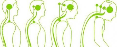 Гимнастика для шеи – «НЕТ» остеохондрозу