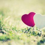 Почему вы выталкиваете любовь