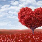Хотите ли вы, чтобы ваша любовь была такой же, как у ваших родителей?