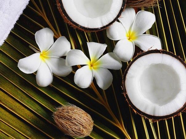 Как правильно пользоваться кокосовым маслом в косметологии