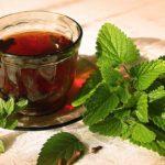 Полезные свойства мятного чая для здоровья